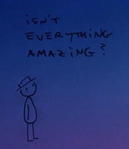 Isn't everything amazing?