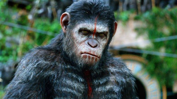 picturehouse planet of the apes