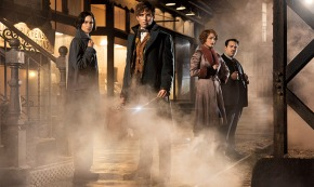 Fantastic Beasts And Where To Find ThemCompetition