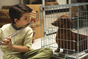 Wiener Dog | Available now on Digital and DVD