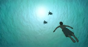 Picturehouse Podcast: Michael Dudok de Wit on The Red Turtle